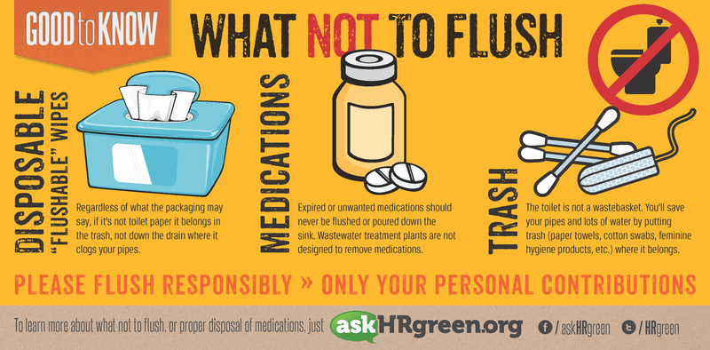 What Not to Flush Infographic (PNG) Opens in new window