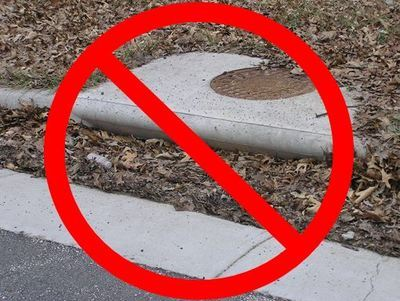 Keep Storm Drains Clear of Leaves